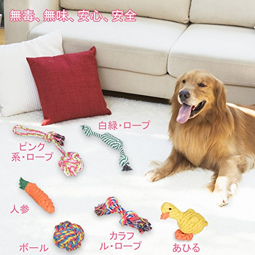 Fohil『犬おもちゃ6個セット』