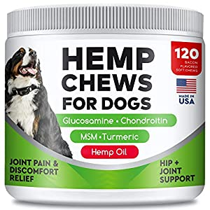 All-Natural Hemp Chews + Glucosamine for Dogs - Advanced Hip & Joint Supplement w/Hemp Oil Turmeric MSM Chondroitin + Hemp Protein to Improve Mobility - Joint Pain Relief Made in USA - Bacon Flavor