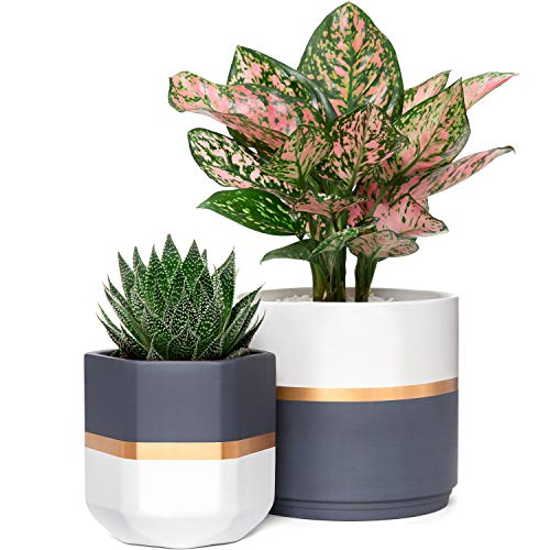 Mkono Ceramic Planters 5 and 6.3 Inch Indoor Modern Flower Plant...