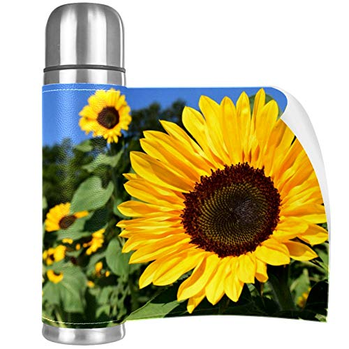 Sunflower Garden Stainless Steel Mug Vacuum Insulated Tumbler Travel Tumbler Thermos Stainless with Lid Best Gift for Children 16.9OZ