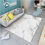 makeups17 alfombras Modernas Grandes Alfombra Interior Y Exterior fácil Mantenimiento Ideal para salón, Cocina,Mármol de imitación Blanquecino 60X110CM(2ft x 3.6ft)