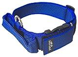 Julius-K9 Collar Color & Gray con la manija, la cerradura de seguridad y el remiendo intercambiables, 40 mm (38-53 cm), Azul-Gris