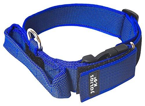 JULIUS-K9, 100HA-K-B-2015 Color & Gray K9-Halsband mit Haltegriff, Sicherheitsverschluss und Logo, 40 mm*38-53 cm, verstellbar, blau-grau