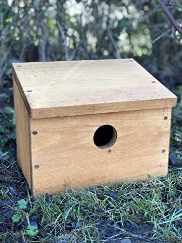 Simply Wood Starling Nest Box