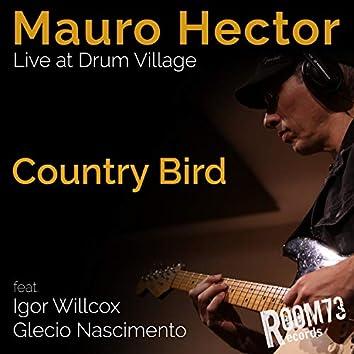 Country Bird (Live at Drum Village)