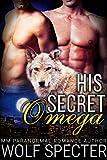 His Secret Omega (M/M Gay Shifter Mpreg Romance) (English Edition)