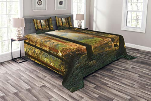 Ambesonne Forest Bedspread, Sunset View of Dark Pine Forest in Autumn Foggy Scene with Sunbeams Trunks Shadow, Decorative Quilted 3 Piece Coverlet Set with 2 Pillow Shams, Queen Size, Orange Green