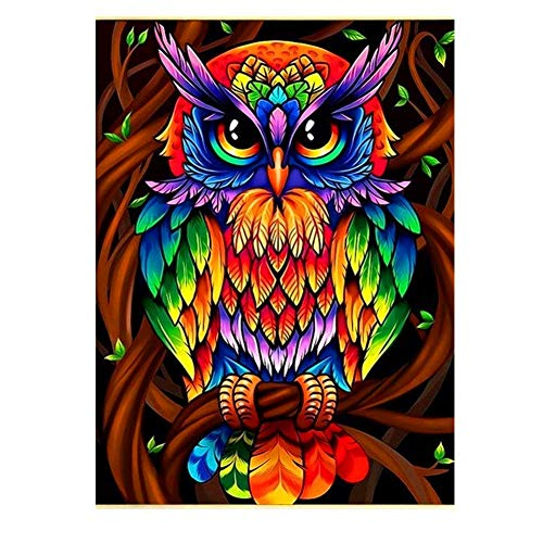 DIY 5D Diamond Art Kit for Adults Kids, Y1 Colorful OwlPictures Rhinestone Cross Stitch Pasted Painting Arts Craft for Home Office Wall DecorationSquare Drill,80x110cm