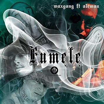 Fúmele (feat. Aleman)