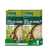 Knorr Crema Setas Bosque - 0,5 l - 4 paquetes: 2L