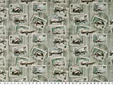Zanderino ab 1m: Popeline, Digitaldruck, Flugzeuge,