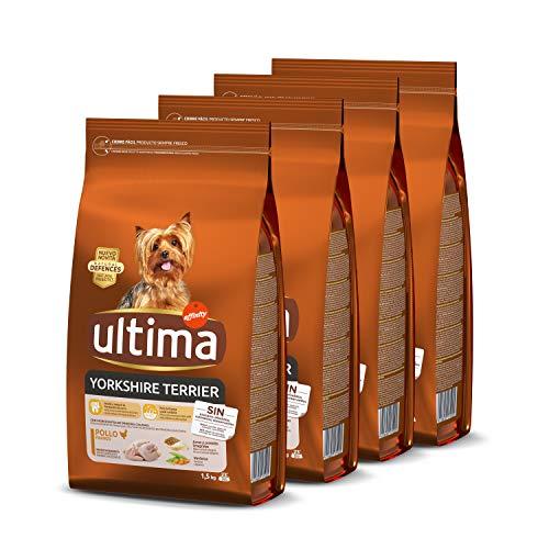 ultima Pienso para Perros Mini Yorkshire con Pollo - Pack de 4 x 1.5 kg, Total: 6 kg