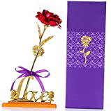 Dream Loom 24K Gold Foil Rose,Artificial Rose Flowers With Display Stand in Gift Box,Best Gift For Valentine's Day, Mother's Day, Anniversary, Birthday,Wedding, Christmas, Thanksgiving, Home Decor