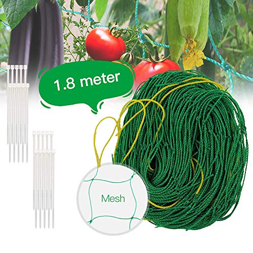 1.8 x 1.8m Climbing Plant Garden Grid Subnet Suitable for Perfect Growth of Cucumber Tomatoes and Vines Suitable for Gardens and Greenhouses with the Best Grid - green