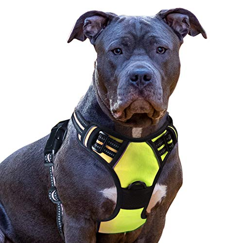 Eagloo Dog Harness No Pull, Walking Pet Harness with 2 Metal Rings and Handle Adjustable Reflective Breathable Oxford Soft Vest Easy Control Front Clip Harness Outdoor for Large Dogs Green