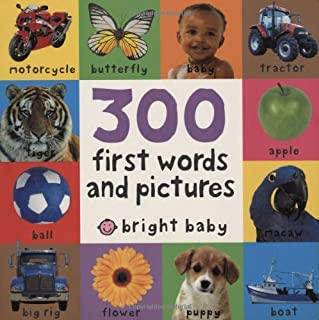 300 First Words and Pictures (Board)