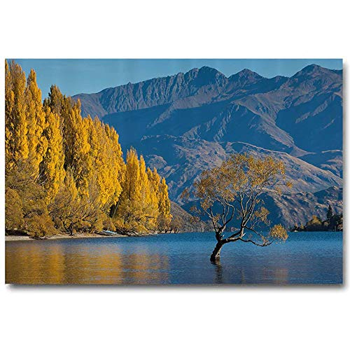 Nature Wood Wall Decor Sunken Tree Lake on Mountain Range Exquisite Rural New Zealand Scenery 2 Year Old Girl Birthday Gift Earth Yellow Light Blue L24 x H36 Inch