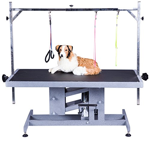 California Pet Supplies Electric Lifting Grooming Table