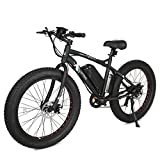 ECOTRIC Electric Beach Snow Bicycle