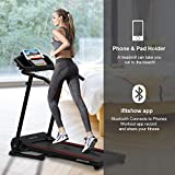 Dog Treadmills Review and Comparison