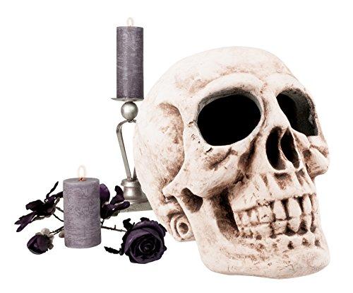 Boland- Teschio Decorazione Skull Master Brain, Bianco, 74522