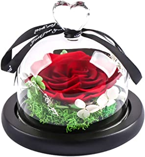 MAMS Preserved Real Rose in Glass Dome Gift Eternal Flower