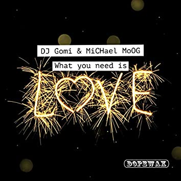 What You Need is Love