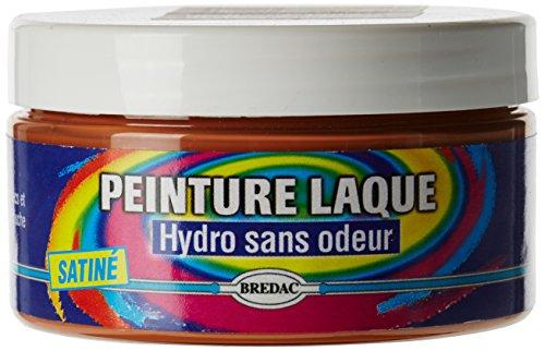 Bredac 11b3226041Vaso di pittura spray Hydro raso 100ml tono Legno