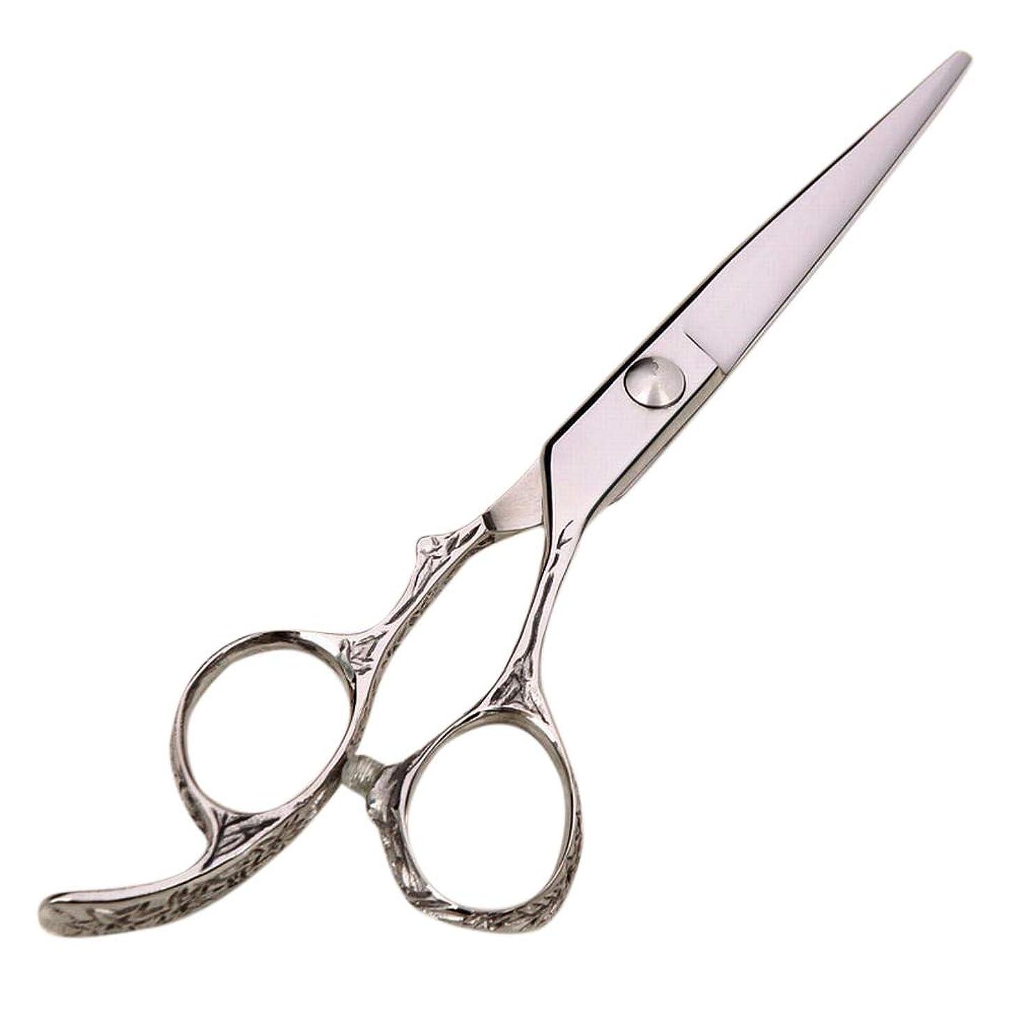 空まろやかな仲良し理髪用はさみ 6インチプロフェッショナルハイエンド理髪はさみ、美容院理髪ツールヘアカットはさみステンレス理髪はさみ (色 : Silver)
