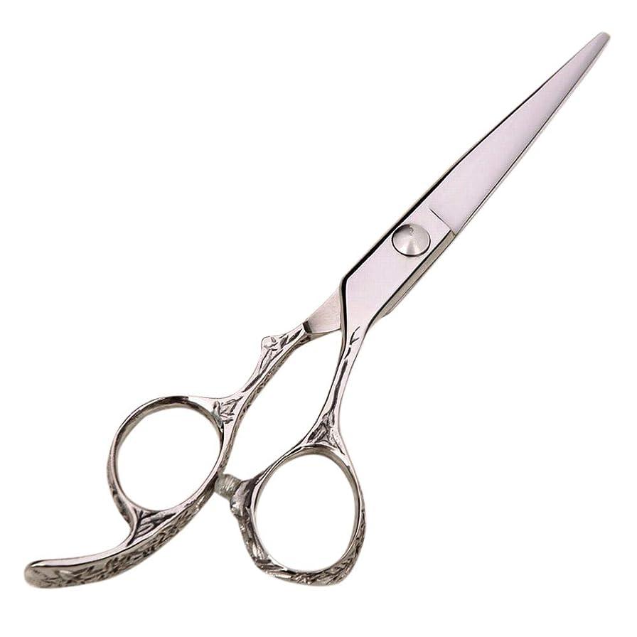 背骨はしご柱6インチハイエンドプロフェッショナル理髪はさみ、美容院理髪ツール モデリングツール (色 : Silver)