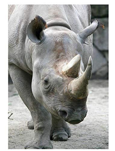 Yqgdss Un Fuerte Rinoceronte Animal 200 Piezas Rompecabezas para Adultos Decoración del Hogar Juego De Rompecabezas para Decoración De Pared DIY