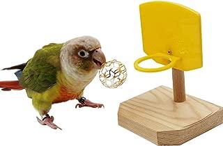Best bird training toys Reviews