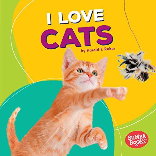 I Love Cats copertina