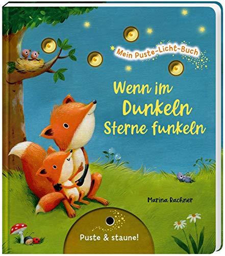 Mein Puste-Licht-Buch: Wenn im Dunkeln Sterne funkeln: Gute-Nacht-Buch mit Puste-Licht und LED-Lämpchen, Mitmachbuch für Kinder ab 18 Monaten