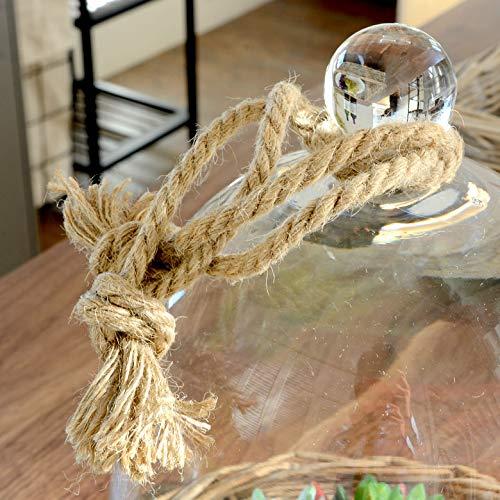 アジア工房『バスケットトレイ付きガラスドーム(62150)』