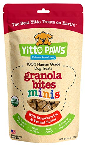 Yitto Paws Dog Treats - Organic, Human Grade Puppy Training Treats Made with Real Fruit and Peanut Butter (Strawberry Minis)