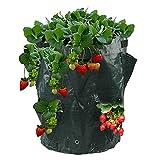 DealMux PE Práctica bolsa de papa con semillas de fresa para jardín, tina de cultivo de vegetales, cojín de planta de PE para plantar