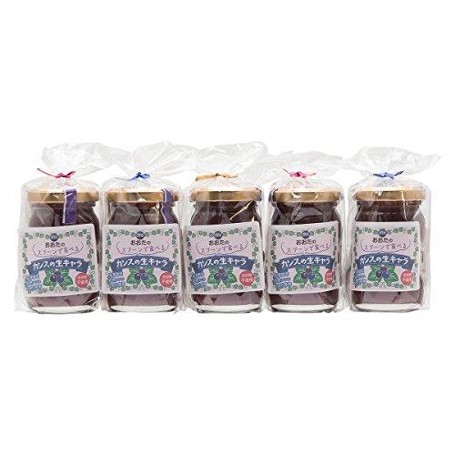 カシスジャムの店おおた おおたのスプーンで食べるカシスの生キャラ〔20g×2×5袋〕