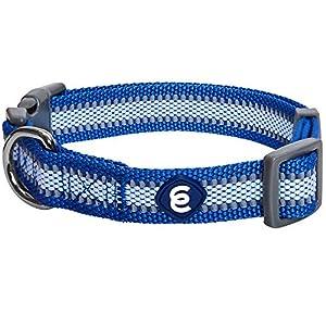 Blueberry Pet Essentials Reflective Back to Basics Adjustable Dog Collar, Navy Blue, Small, Neck 12″-16″