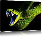 Dark Grüne Schlange, Natur, USA Bild auf Leinwand, XXL