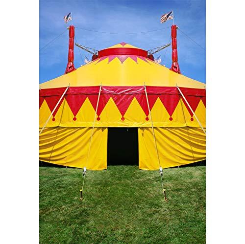 Cassisy 2x3m Vinilo Circo Telon de Fond Al Aire Libre Carpas Coloridas del Circo Campos de Hierba Verde Cielo Soleado Fondos para Fotografia Party bebé Infantil Photo Studio Props Photo Booth