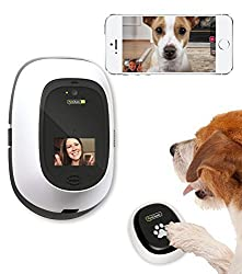Digital Daycare for home alone pet