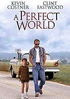 パーフェクトワールドフィルムシリーズ映画ポスタープリントサイズ(30cm x 43cm / 12インチx 17インチ)N1