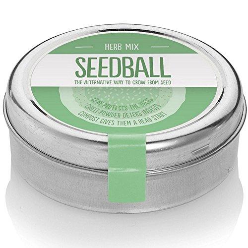 Balles de semences Mélanges d'herbes - Cultivez votre propre jardin potager - Basilic, Ciboulette, Marjolaine, Aneth et Persil - 2000 graines par boite