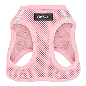 Best Pet Supplies Voyager Step-in Air Dog Harness – All Weather Mesh, Step in Vest Harness for Small and Medium Dogs Pink (Matching Trim), S (Chest: 14.5-17″) (207T-PKW-S)