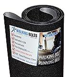 WALKINGBELTS Walking Belts LLC - 248183 NT X5i Incline Trainer Treadmill Running Belt 1ply Sand Blast + Free 1oz Lube