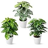 CROSOFMI Plantas Artificiales Interior 24 cm Mini Plastico Macetas Pequeñas...