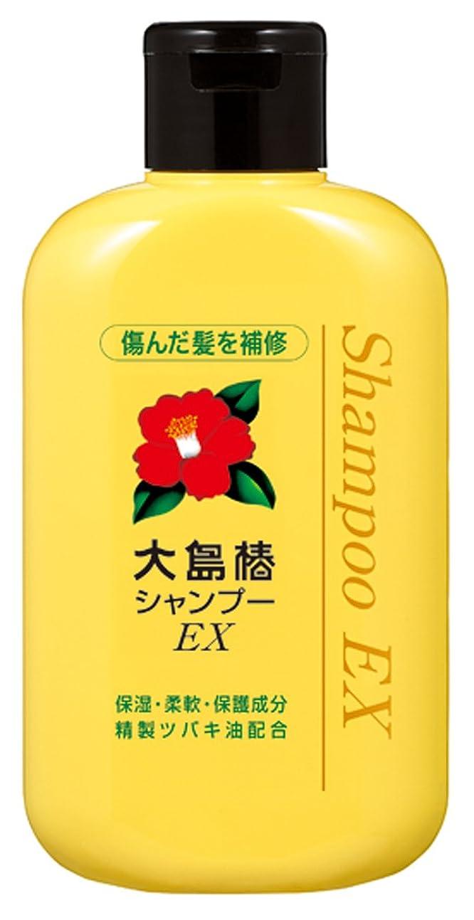 土器郵便屋さん対人大島椿 EXシャンプー 300mL