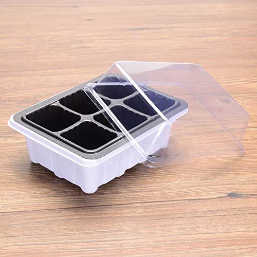 Homeng 10 Unidades de Bandeja de iniciación para Invernadero, Bandeja de Cultivo para Semillas, Caja de Cultivo para germinación de Semillas, plástico, Negro, 6 Holes: Amazon.es: Hogar