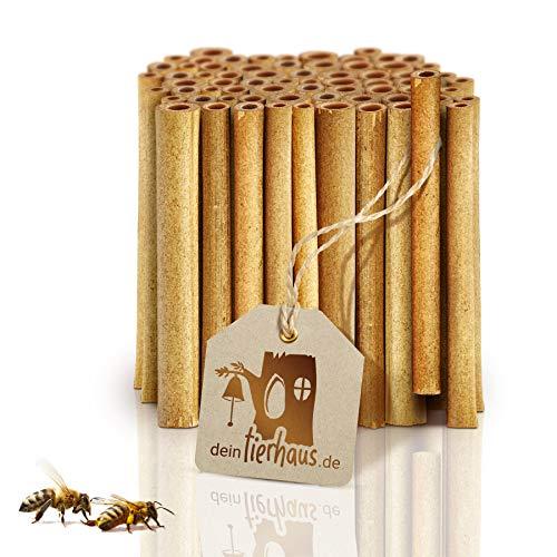 deinTierhaus.de© | 70x natürliche Nisthülsen aus Bambus für Wildbienen - ökologische Bambusröhrchen - Bruthülsen als Füllmaterial für Insektenhotel bzw. Bienenhotel - Bienen Nisthilfe | ca. 15cm Länge